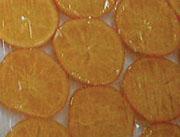 东迈士-TGF007-橙脯