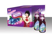 浩园-蓝莓汁箱