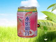 240ml易拉罐水蜜桃汁