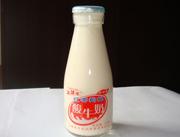 牛牛乐红枣枸杞酸奶220ml