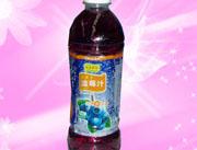 香果依恋蓝莓汁500ml