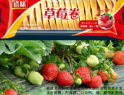 福建龙海草莓卷面包
