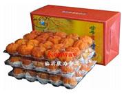 康为礼盒柿饼
