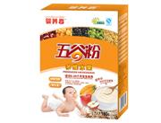 婴养谷180克多维水果五谷粉盒装