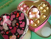 爱斯妮巧克力156g礼盒