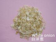 爱芙帝-白洋葱