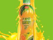 琼中绿橙汁450g