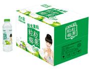 恋恋果椰果粒550ml×15瓶