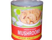 柏林蘑菇罐头425g