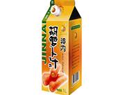 神内-1L纸盒胡萝卜汁