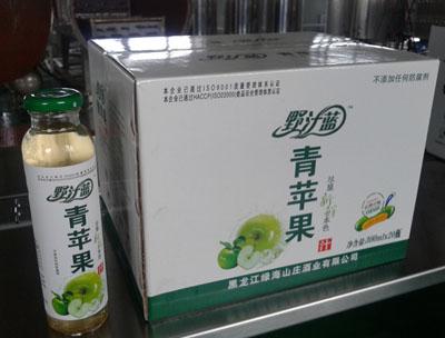野汁蓝青苹果汁300ml×20瓶