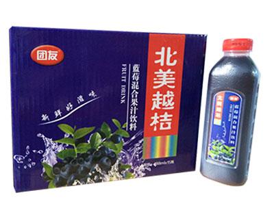 首页 产品库 饮料冲调产品 > 果汁饮料