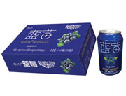 达威蓝莓碳酸饮料310ml