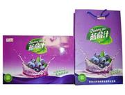 鲜汇美源蓝莓汁易拉罐礼盒系列