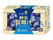 芒果树野生蓝莓汁箱装