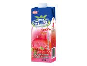 椰臣石榴汁1L