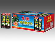 果泉果肉椰汁纸箱245mlX24瓶