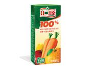 汇源100%胡萝卜复合果汁1L
