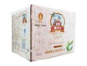 椰鹭生榨椰子汁植物蛋白饮料600ml×12瓶