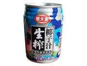 旭天源生榨椰子汁250ml