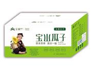 宝山瓜子(五香瓜子)箱装
