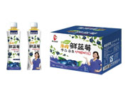 鑫益品堂原榨鲜蓝莓汁500ml×15瓶