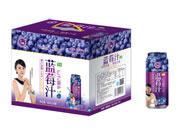汇之果蓝莓汁960ml×6罐紫色