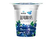 新希望蝶泉蓝莓酸奶风味发酵乳