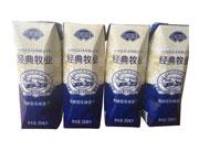 今初元经典牧场发酵型乳味饮品250ml