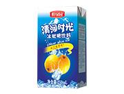 鲜绿园冰枇杷饮料250ml