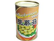 锦鹏整蘑菇罐头