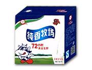 玉中食品纯香牛奶酸奶型乳酸菌饮品