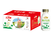 大王椰无菌冷罐装椰子牛乳饮品330ml×15瓶