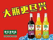 安江凌饮品大瓶VC饮料系列