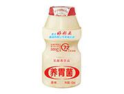 好彩头养胃菌原味乳酸菌饮品100ml