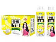 佰润香蕉牛奶500mlx15瓶