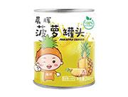晨辉菠萝罐头248克