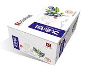 西湖梅园蓝莓片50gx12
