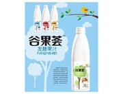 谷果荟发酵果汁