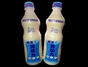 胃动力原味乳酸菌饮品1l