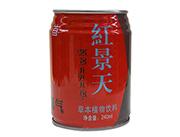 首一红天景草本植物饮料240ml