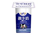 少年时代原味酸奶饮品120g