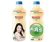畅饮养胃多乳酸菌饮品1.25l