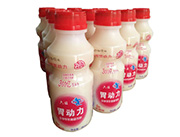 胃动力发酵型乳酸菌饮品草莓味340ml
