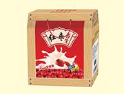 红枣养生奶250mlx12盒