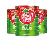 番茄酱850g