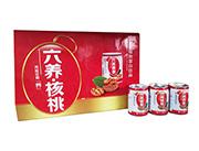 六养核桃植物蛋白饮品