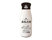 奥牧利斯原味巴氏杀菌发酵风味饮品300ml