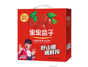 果果益子山楂果肉饮料250mlx12盒