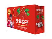 果果益子山楂果肉饮料250mlx12盒手提装